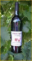 Pinot Noir Grand Cuvée Réservée AOC